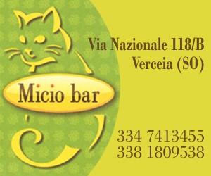 Micio Bar